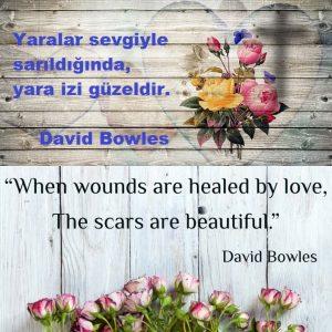 David Bowles,Quote, Özlü Söz